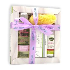 Gift set with natural cosmetics | Oily / Mixed skin